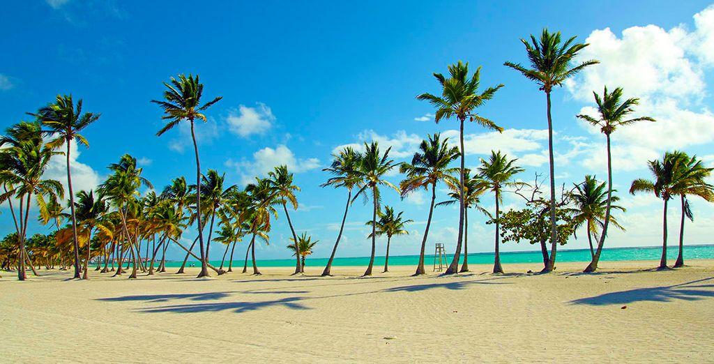 Partez pour le cadre idyllique de Punta Cana