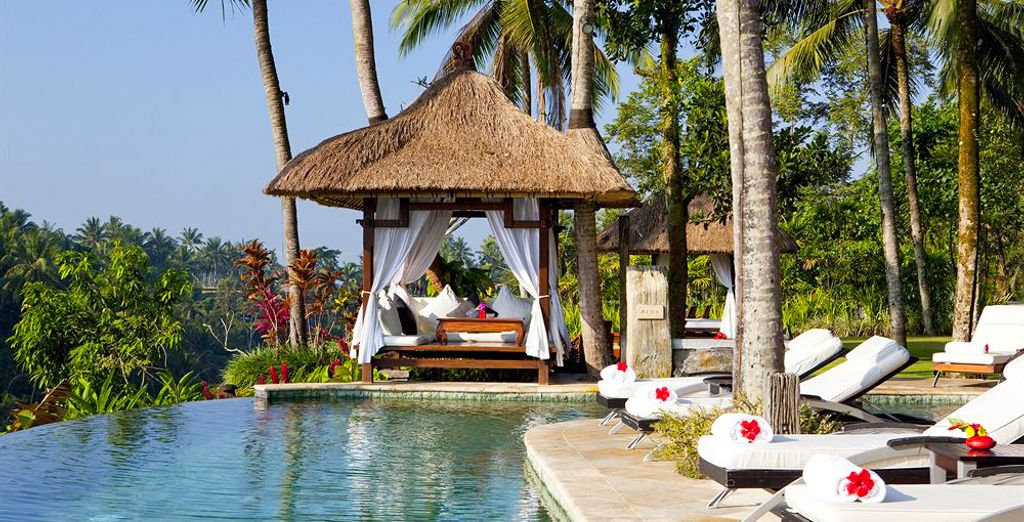 Faites de votre séjour une véritable parenthèse détente autour de la piscine principale