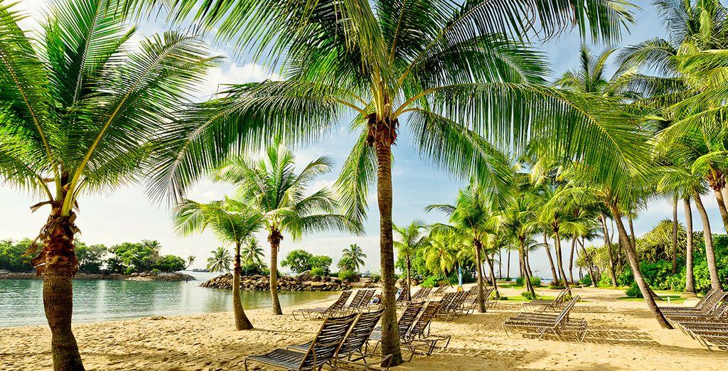 Plage paradisiaque à Singapour sur l'île Sentosa