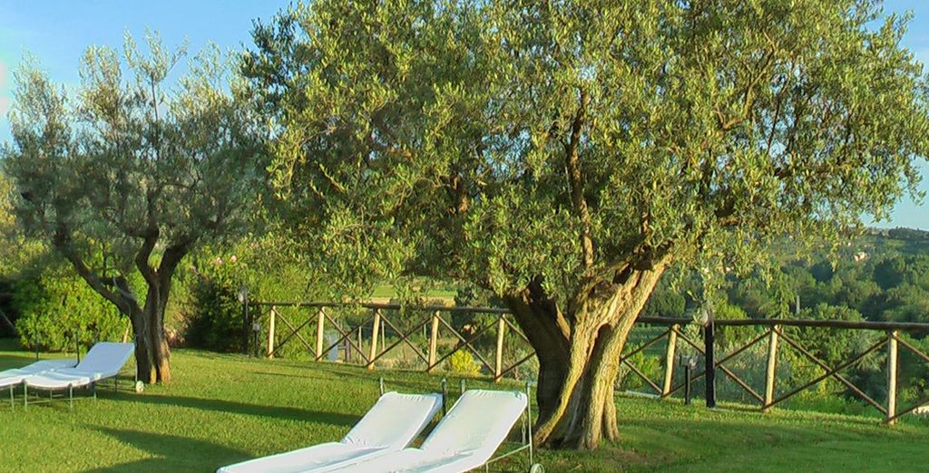 Bienvenue au Tre Vaselle ! - Hôtel Tre Vaselle Resort & Spa ***** Torgiano
