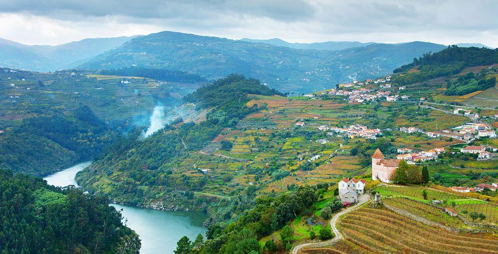 Et pourrez admirer les paysages de la Vallée du Douro