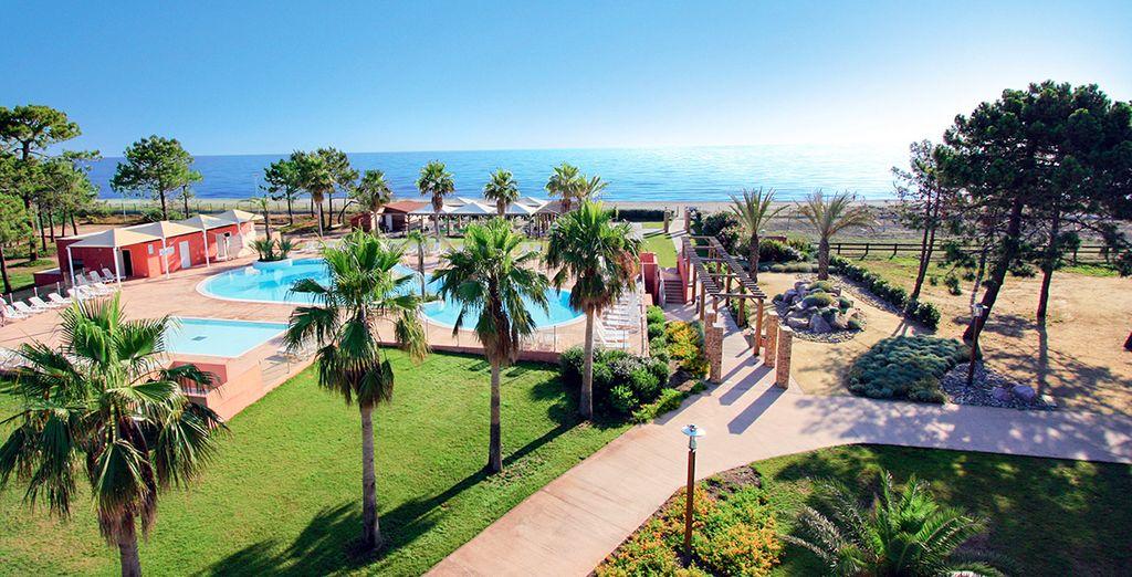 Bienvenue en Corse pour des vacances les pieds dans l'eau... - Club Belambra Pineto Borgo