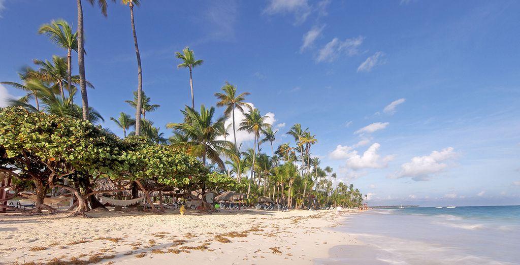 Profitez du soleil de la République Dominicaine