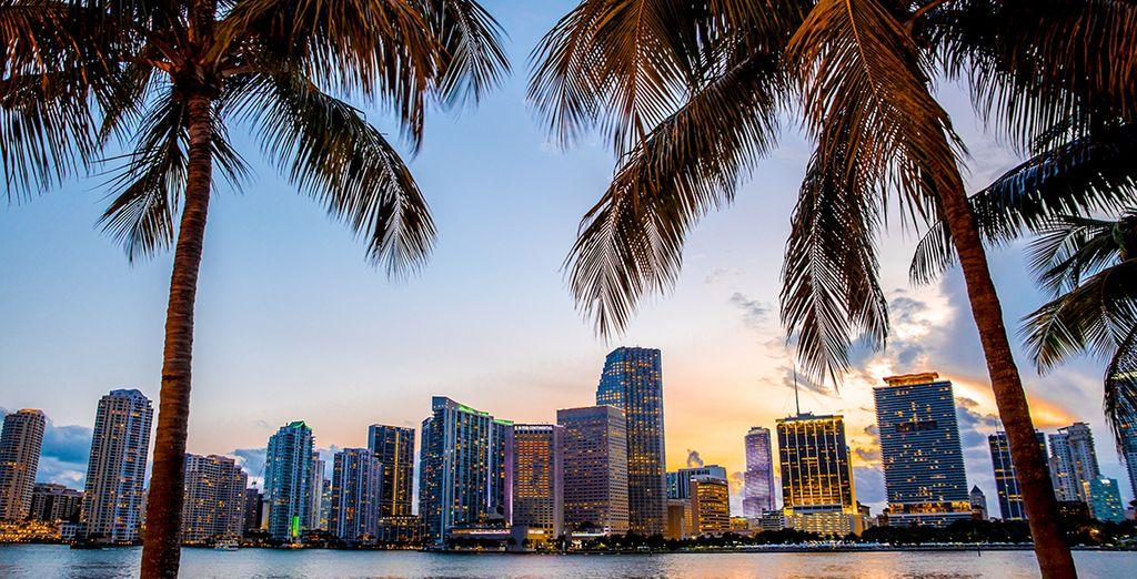 Bienvenue en Floride !
