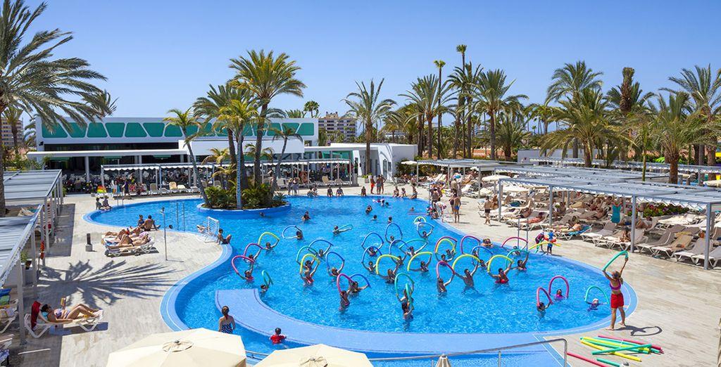 Club h tel riu papayas 4 voyage priv jusqu 39 70 for Club piscine lasalle