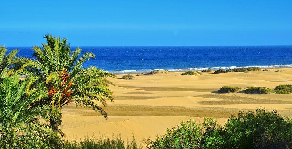 Photographie de la Grande Canarie et ses plages de sable fin