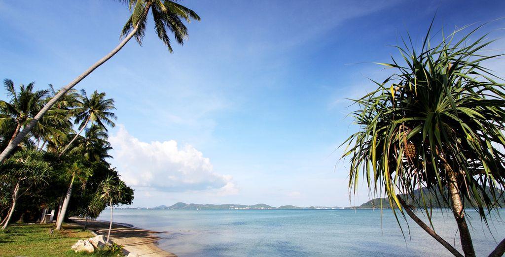 Envolez-vous vers Phuket...