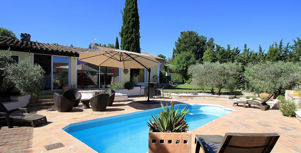 Un jardin agrémenté d'oliviers