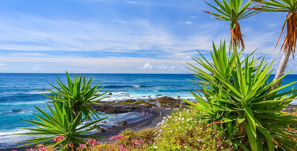 N'oubliez pas d'arpenter les routes de la splendide île de Tenerife