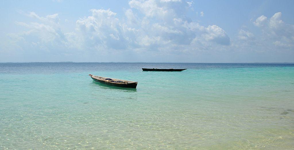 Finissez votre séjour en beauté sur l'île sauvage de Pemba