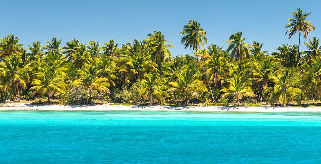 potrete partire per un escursione sulle spiagge e le isole vicine