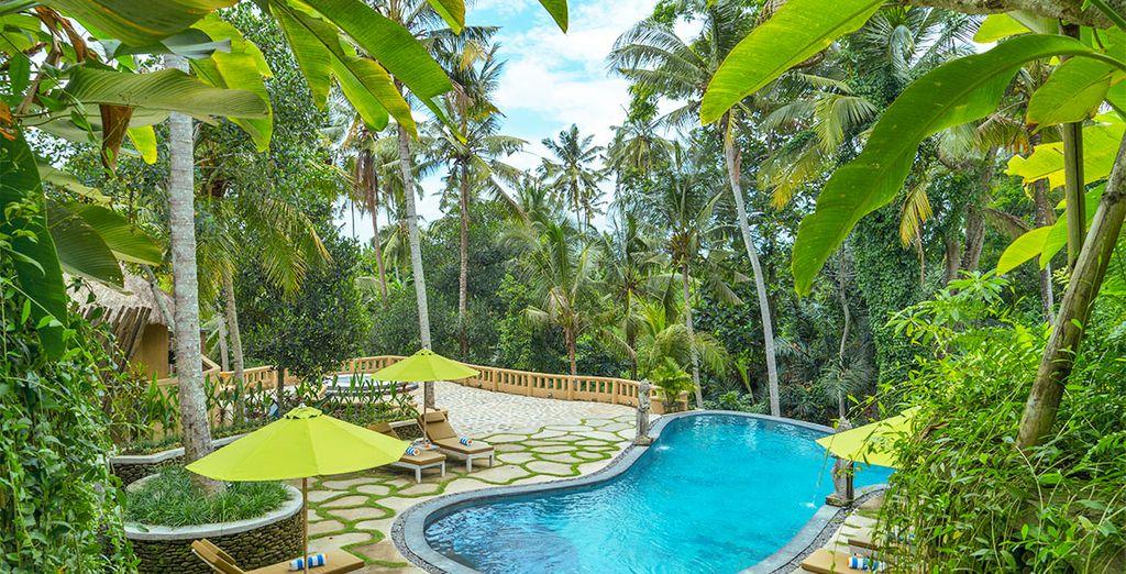 Un viaggio a Bali non si dimentica