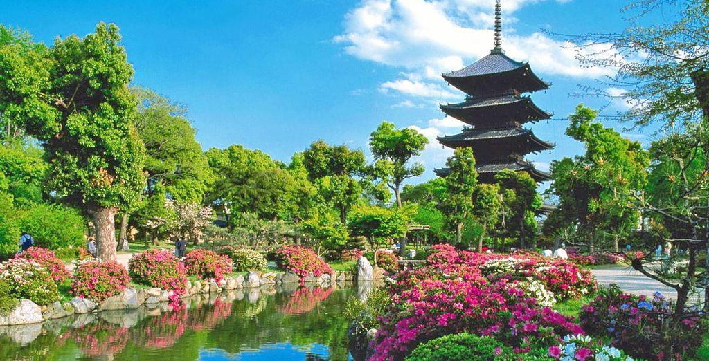 Tempio giapponese nel cuore di Osaka