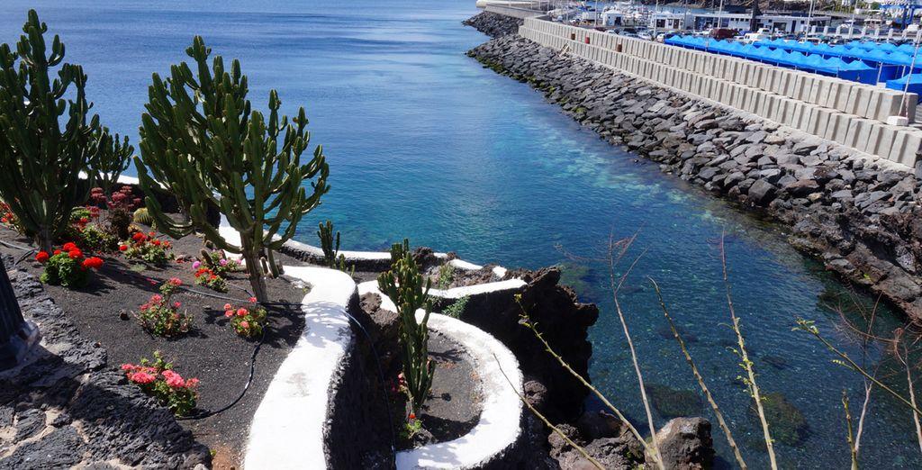 Una meritata vacanza alle Canarie