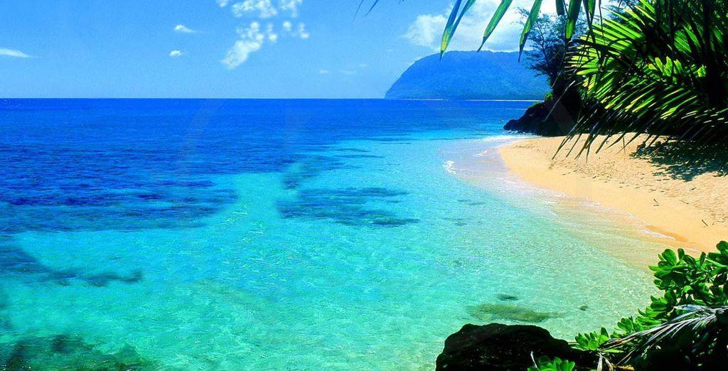 Fotografia delle spiagge delle Hawaii e delle loro acque turchesi