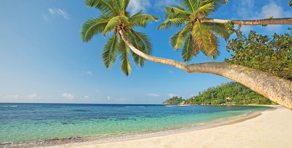 Benvenuti alle Seychelles