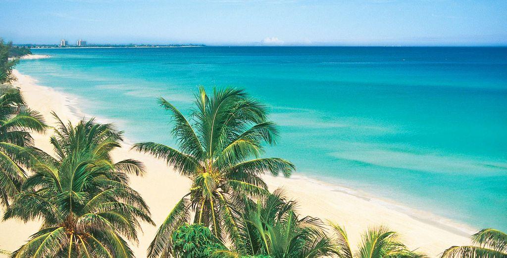Benvenuti nella splendida isola di Cuba