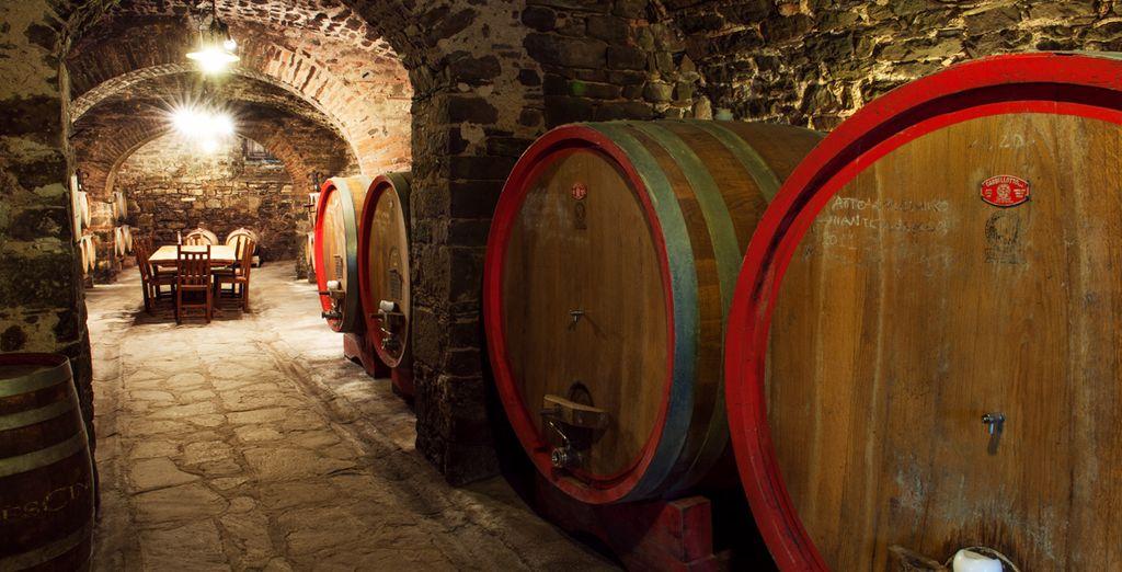 Luoghi speciali dove scoprire i segreti del vino