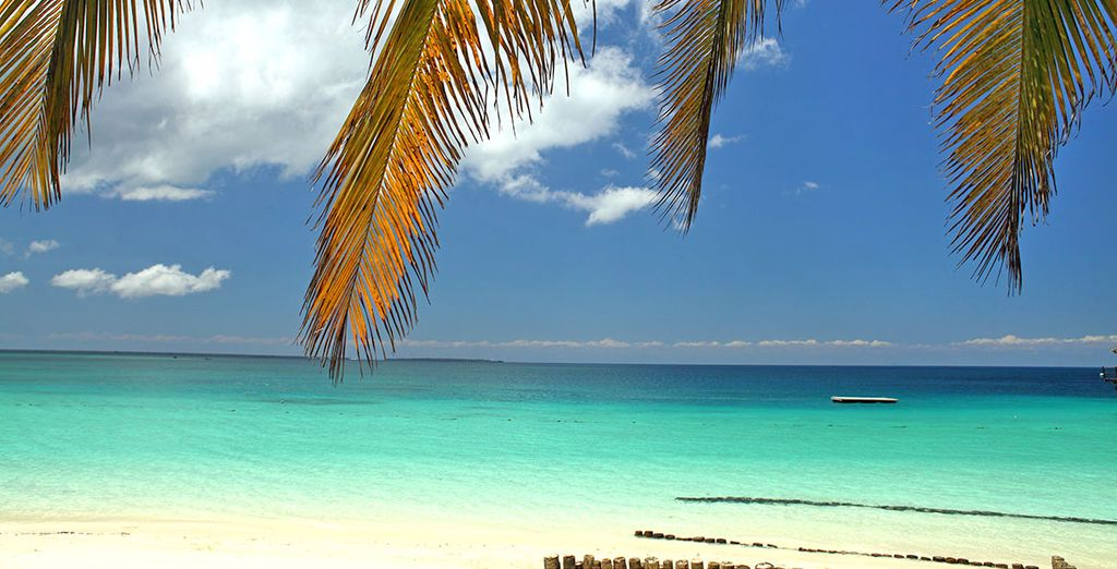 Su spiagge da sogno