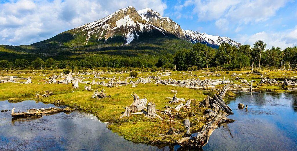 Raggiungerete El Calafate, il punto di partenza per la visita dei più importanti ghiacciai