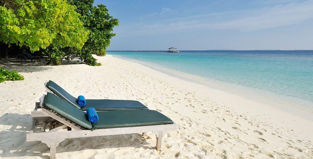 Vivrete una vacanza da sogno in questo angolo di paradiso!