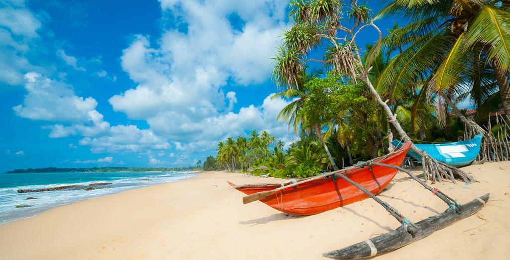 Dopo il tour vi aspetta uno splendido soggiorno al mare sulle spiagge di Bentota