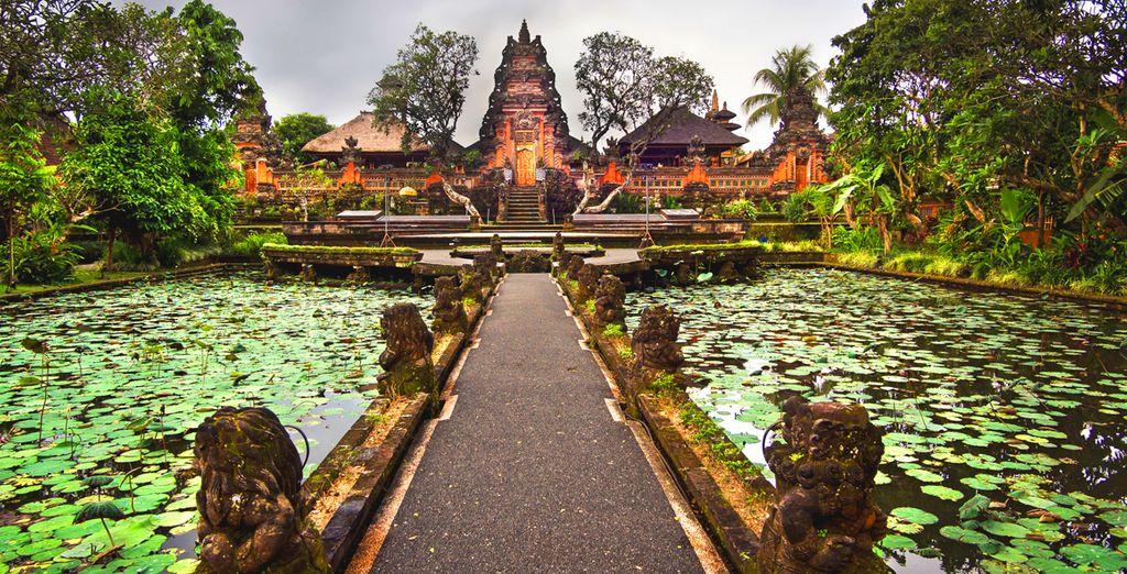 veri santuari immersi nel verde della foresta pluviale