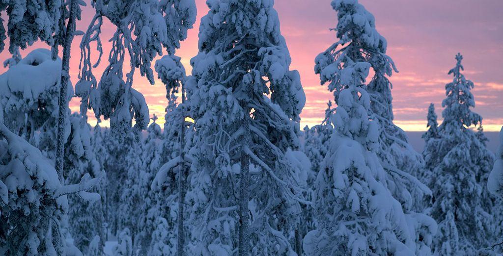 La neve renderà ogni momento unico