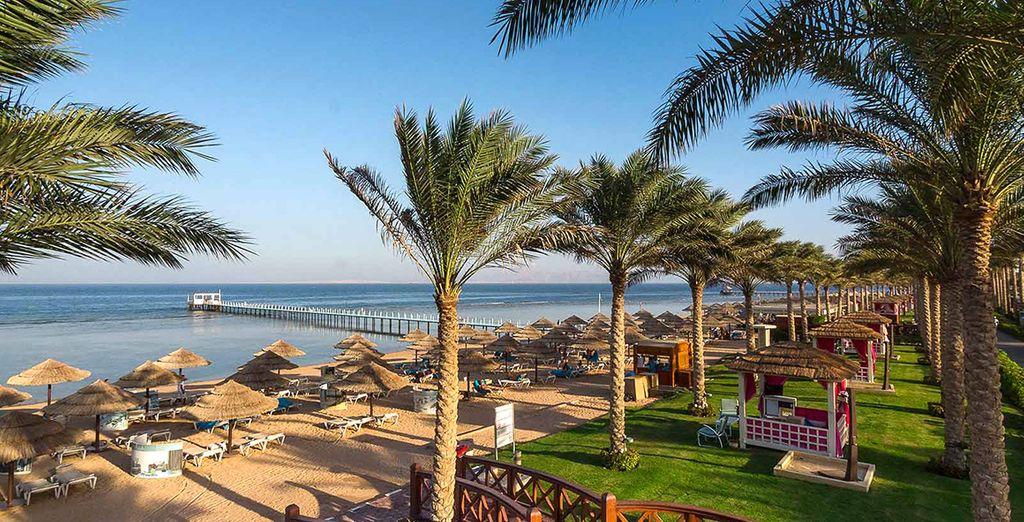 La bellissima spiaggia di sabbia bianca vi attende per una vacanza di vero relax.