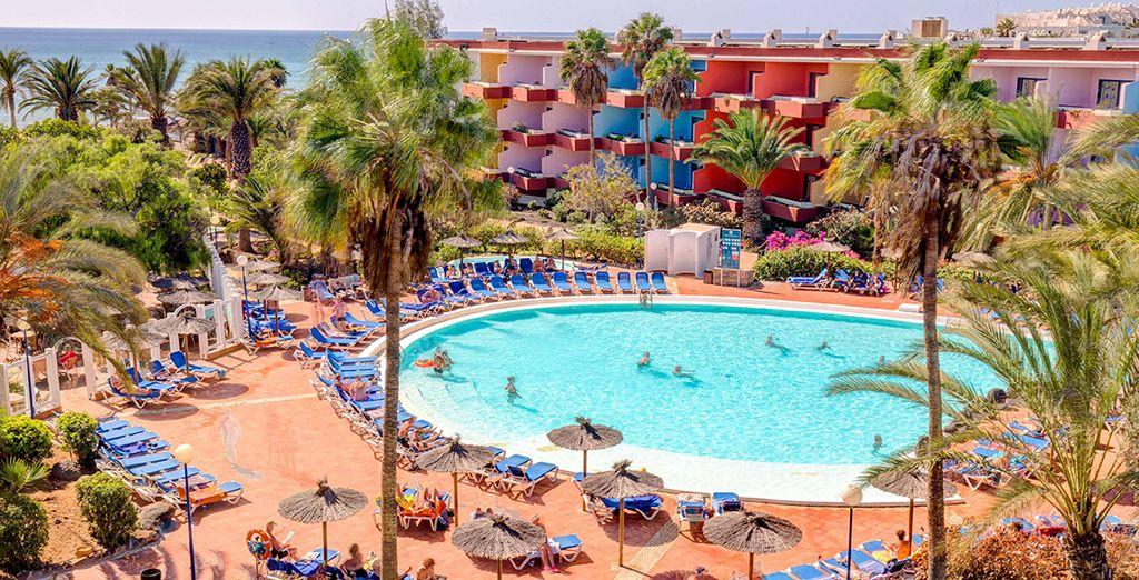 SBH Fuerteventura Playa vi attende