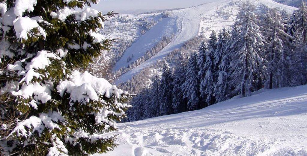 Natura, sci e divertimento: tutto questo e molto altro per una vacanza da ricordare!