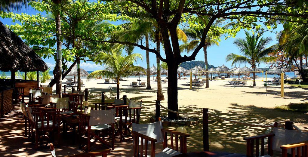 Sorseggiate bevande rinfrescanti sulla spiaggia