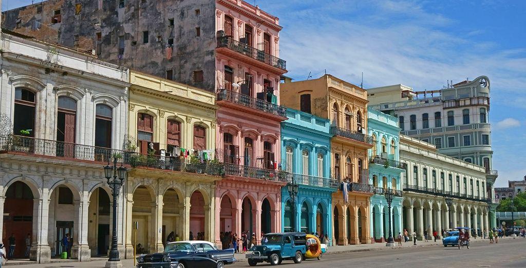 Avana - Caraibi