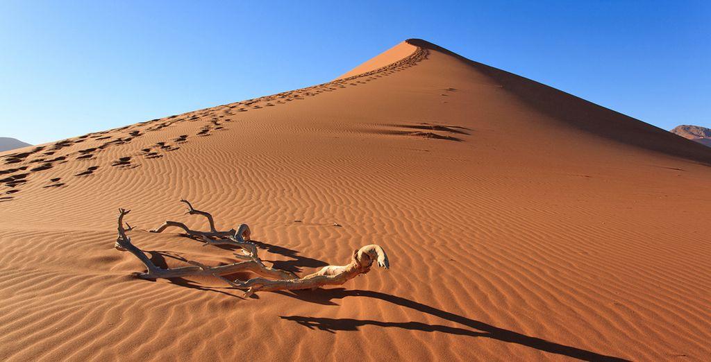 Fotografia del deserto della Namibia
