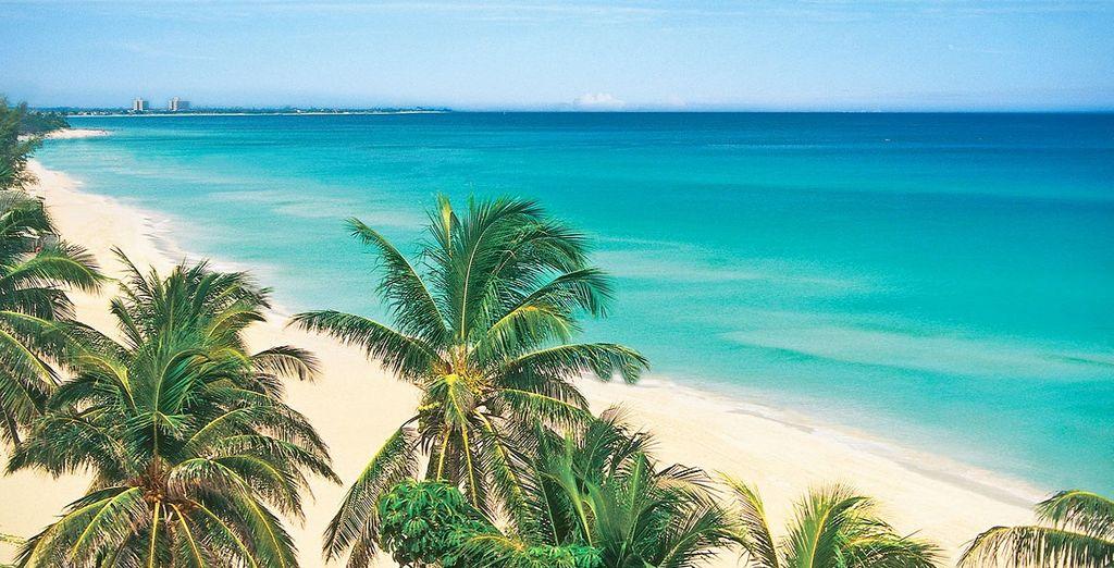 Tour di Cuba: L'Avana, Vinales e Varadero