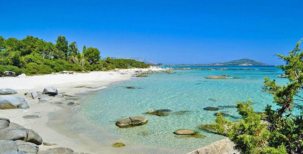 La bellezza unica dei suoi meravigliosi paesaggi vi farà innamorare.