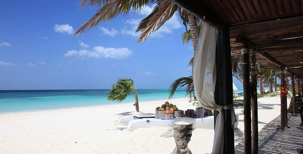 Il ristorante gode dello splendido affaccio sulla spiaggia