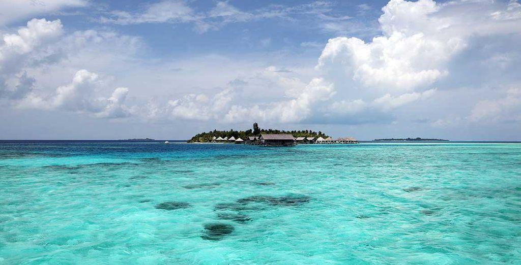 Un hotel di lusso situato ai margini dell'Atollo di Ari Nord, sullo splendido Atollo Gaafu Dhaalu