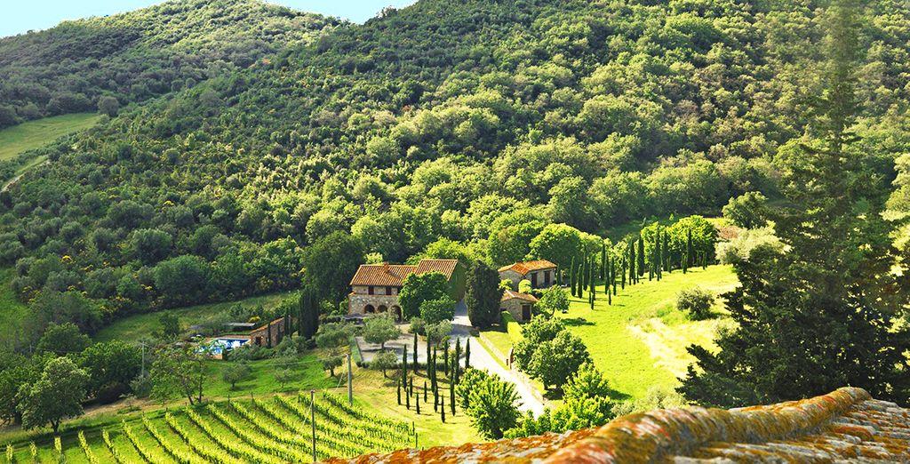 Vivete il vostro indimenticabile viaggio nel cuore dell'Umbria