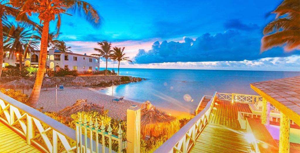 e vivere la magia di quest'isola delle Piccole Antille unica al mondo