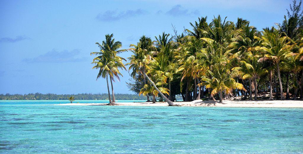 Crociera in veliero tra le isole della Polinesia Francese