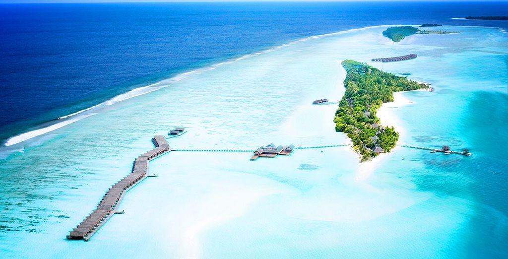 Fotografia delle isole Maldive e delle sue paradisiache spiagge che si affacciano sull'Oceano Indiano