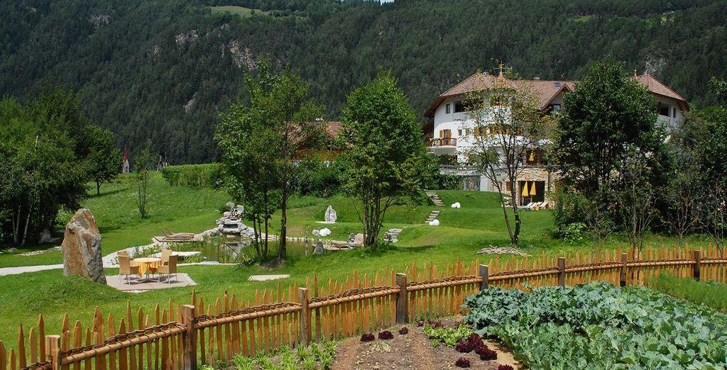 Terra, grazie al giardino biologico nella quale nascono gli ingredienti principali della gastronomia dell'hotel