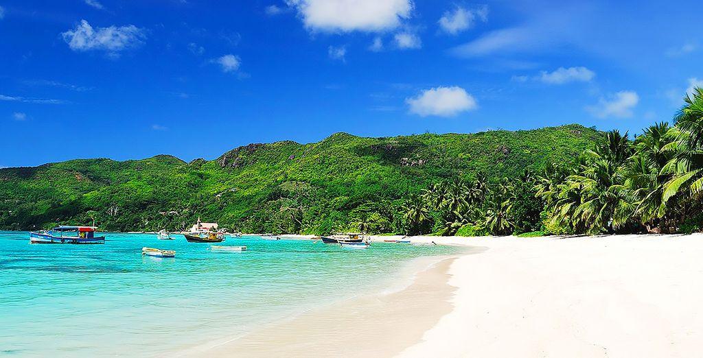 Benvenuti alle Seychelles!