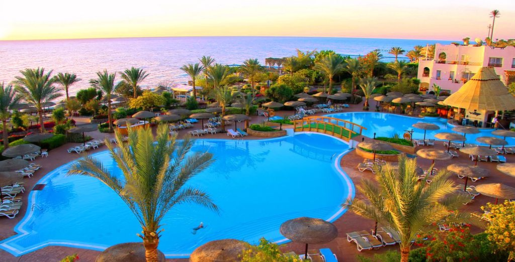 Benvenuti al Royal Grand Sharm
