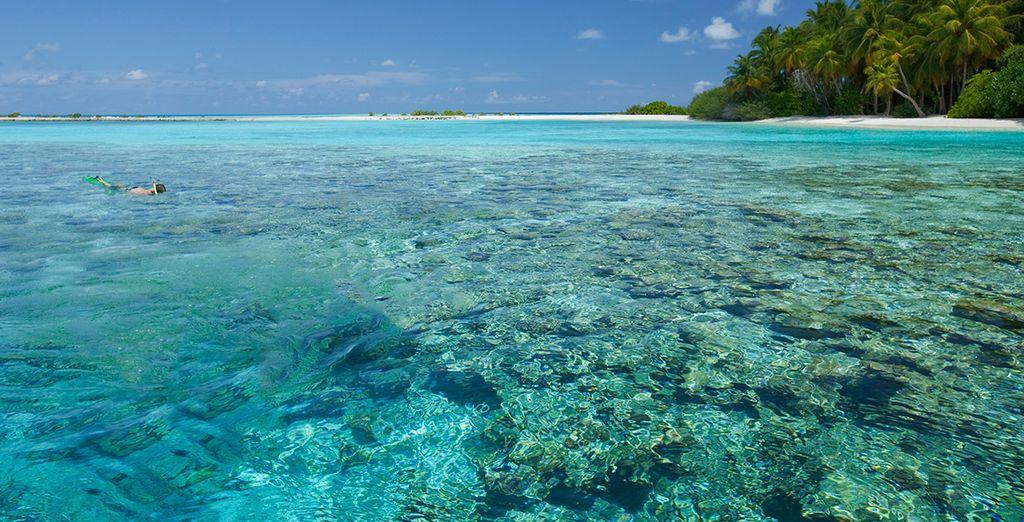 Mini tour sri lanka e soggiorno mare alle maldive voyage for Soggiorno alle maldive