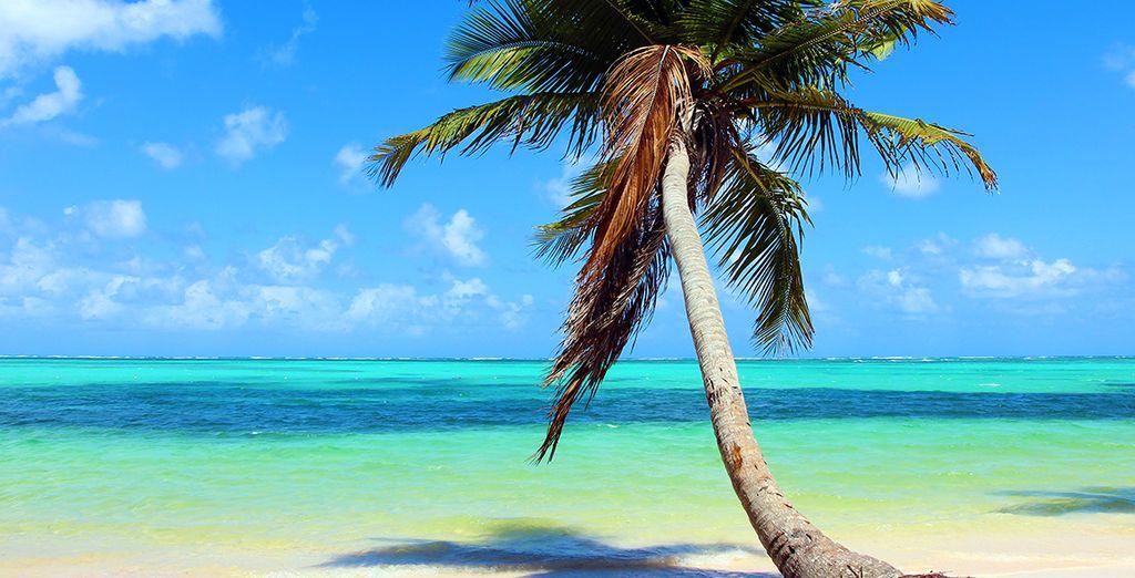 La vostra meravigliosa vacanza continua in un piccolo angolo di paradiso