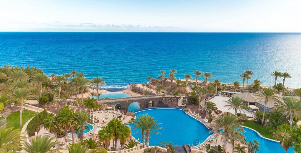 Vlieg naar Fuerteventura ...