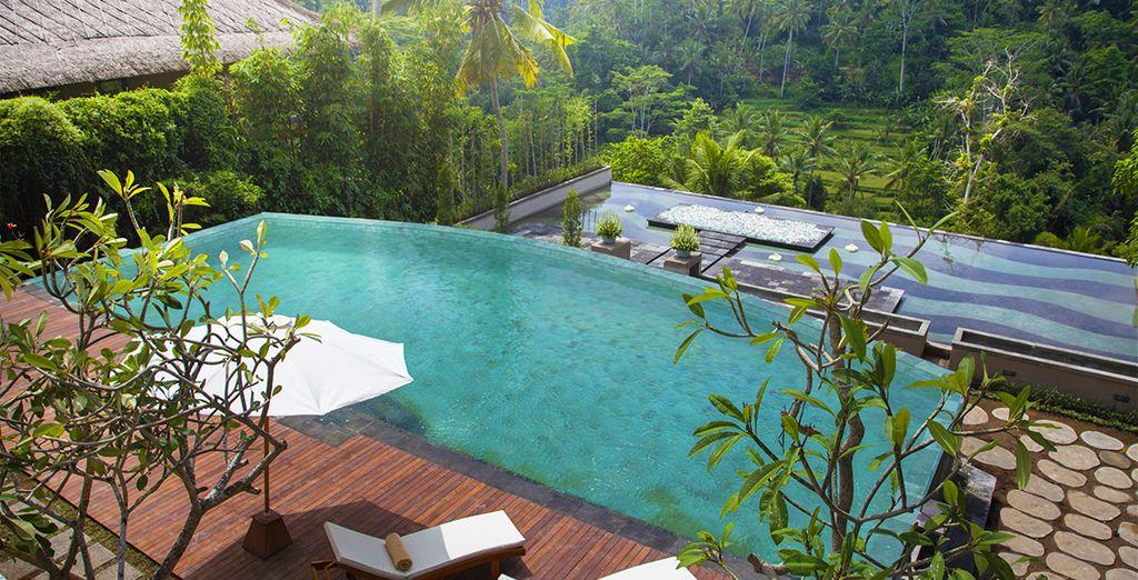 In een 4* hotel, gebouwd in harmonie met de natuur: Jannata Resort