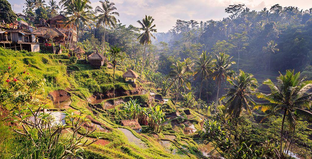 Eerst het hart van het authentieke deel van Ubud